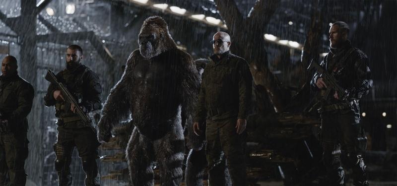 """Kadr z filmu """"Wojna o planetę małp"""" (źródło: materiały prasowe)"""