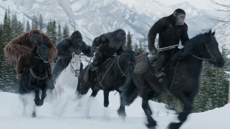 """Kadr z filmu """"Wojna o planetę małp"""" (źródło: youtube.com)"""