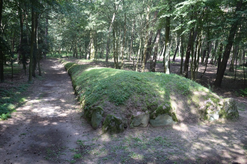 Park Kulturowy Wietrzychowice (fot. PJ)