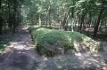 Park Kulturowy Wietrzychowice i Sarnowo – niezwykłe przeszło tysiącletnie korzenie Kujaw -